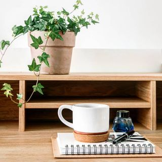 Green Home Office Design / Decoration (#124710)